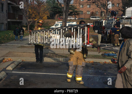 firefighters carrying a ladder - Stock Image