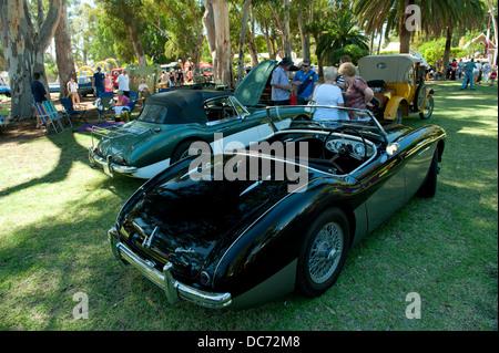 Classic black Austin-Healey sportscar - Stock Image