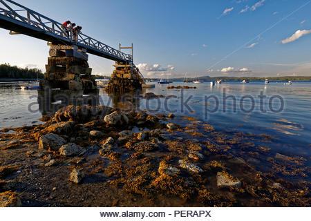 Wharf at Hancock Point, Maine, USA - Stock Image