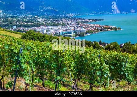 Vevey and Geneva lake - Stock Image