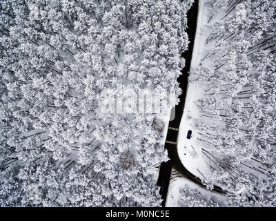Aerial top view flat lay of road in winter forest - Stock Image