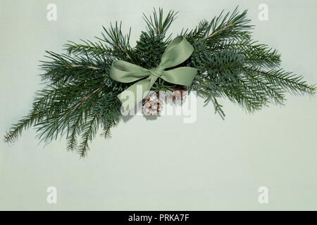 Fir branch decorated with ribbon bow - Stock Image
