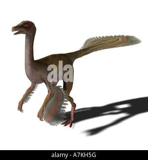 Caudipteryx dinosaur - Stock Image