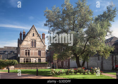Old house and tree in Honfleur in Normandy, France - Stock Image