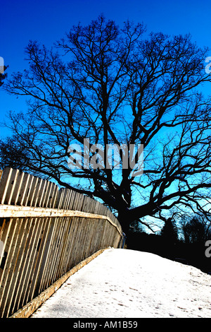 White Picket Fence Woodstock Vermont - Stock Image