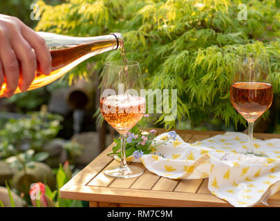 Waiter pouring cold rose wine in glasses on outdoor terrace in garden in sunny day - Stock Image