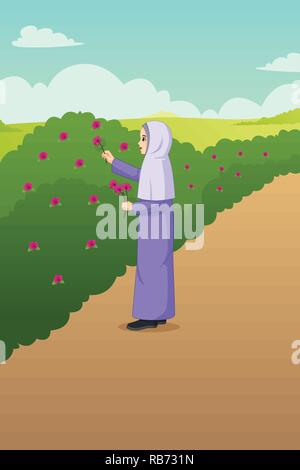 A vector illustration of Muslim Woman Picking Out Flowers in the Garden - Stock Image