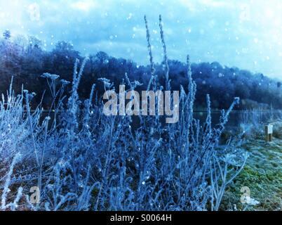 Frozen winter landscape - Stock Image