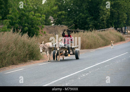 Men riding a donkey cart along the road. Mopti Region, Mali, West Africa. - Stock Image