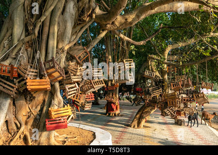 Vertical view of a wishing tree in Kanyakumari, India. - Stock Image