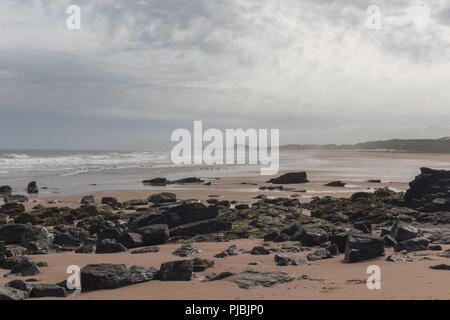 Looking along the beach at Forvie Sands Nature Reserve, Newburgh, Aberdeenshire, Scotland, UK - Stock Image