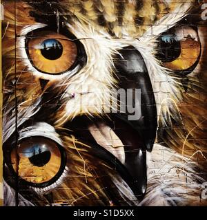 Street art of owls on Melbourne laneway wall - Stock Image