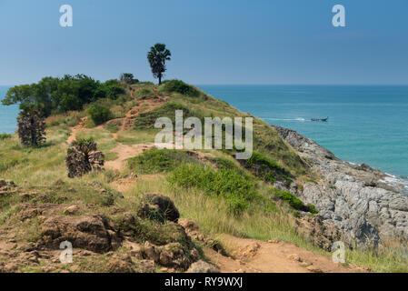 Natural trail on Promthep cape, Phuket, Thailand - Stock Image