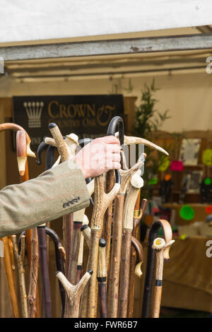 Man selecting a shepherds crook head walking stick from a collection of carved wood and horn headed sticks, on sale - Stock Image