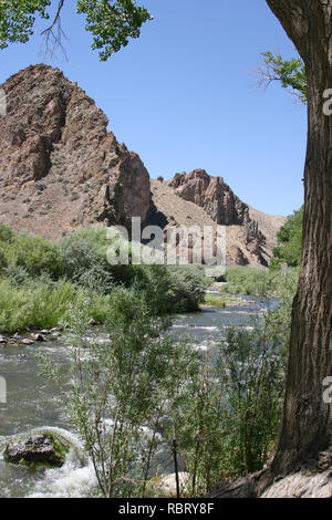 A scenic, life-giving river runs through a dry, rocky desert landscape surrounded by thriving plant life in the western USA - Stock Image
