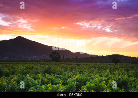 Beautiful landscape with high mountains and grape field at rays of sunset. Colorful dramatic sky - Stock Image