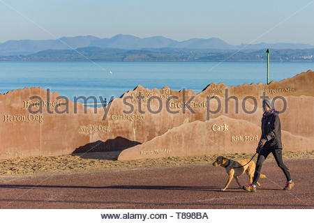 Morecambe, Lancashire, UK, 12th May 2019, UK Weather. A walker walks with her dog along the promenade at Morecambe in the early morning sunshine, past the metal sculpture of the Lake District Hills, with the Coniston and Langdale Fells visible in the distance across Morecambe Bay. After an overnight ground frost and a cold start to the day, unbroken sunshine is forecast, with temperatures rising into the early part of next week. Credit: Keith Douglas News/Alamy Live News - Stock Image