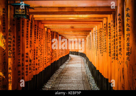 Some of the 10,000+ tori gates at the Fushimi Inari Shrine  in Kyoto, Japan - Stock Image