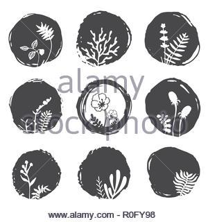 Vector ink spots - Stock Image