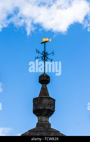 The brass Bradford on Avon gudgeon fish shaped weather vane on top of the old lock up on the town bridge - Stock Image