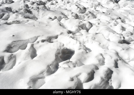 Trampled snow pattern from unknown boots or animal tracks followed by a fresh snowfall - Stock Image