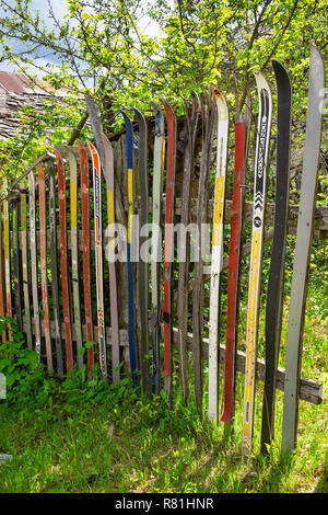 Fence made out of old skis, Piemonte, Italy - Stock Image