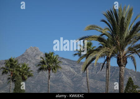 La Concha Mountain, Puerto Banus, Marbella, Nueva Andalucia,  Spain - Stock Image