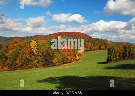 Autumn landscape with colorful forest and blue sky - Stock Image