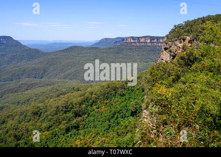 Jamison Valley and Blue Mountains from a lookout on Prince Henry Cllff Walk near Katoomba, Blue Mountains National Park, New South Wales, Australia. - Stock Image