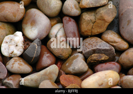Wet Pebbles - Stock Image