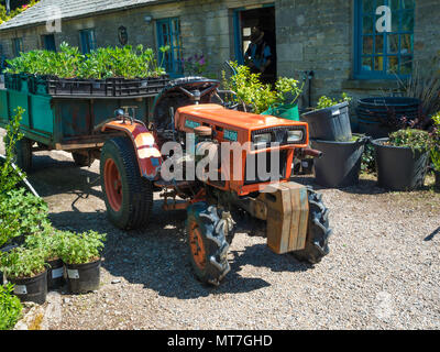 A small Kubota B4200 tractor towing a trailer full of plants in a market garden in Eggleston Durham England UK - Stock Image