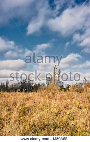 Yellow field with trees and apartment block in the background in Poznan, Poland - Stock Image