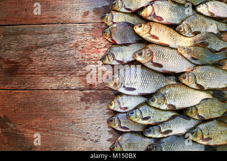 Fresh caught carp fish on wood. Catching freshwater fish on wood background. A lot of bream fish, crucian or roach - Stock Image