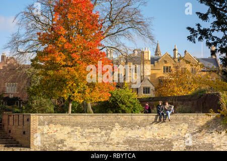 Students sat on a wall on the bank of the River Cam outside Clare College in autumn, Cambridge, UK - Stock Image