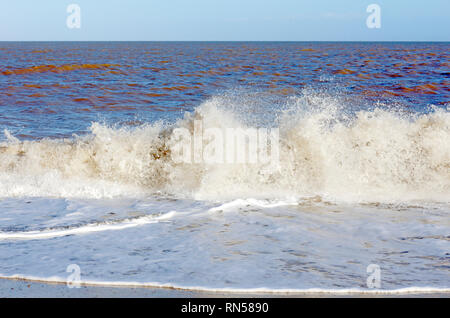 A view of a wave breaking on the shore in East Norfolk at Winterton, Norfolk, England, United Kingdom, Europe. - Stock Image