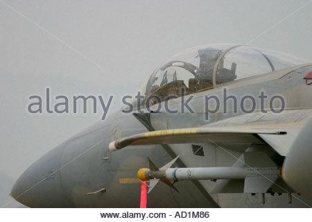Zeltweg 2005 AirPower 05 airshow Austria Eagle F15 USAAF - Stock Image