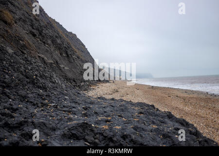 On the famous Jurassic coast beach between Charmouth and Lyme Regis in West Dorset UK - Stock Image