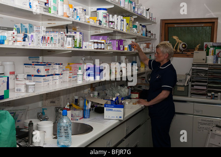 Nurse in the Dispensary of a Veterinary Practice - Stock Image
