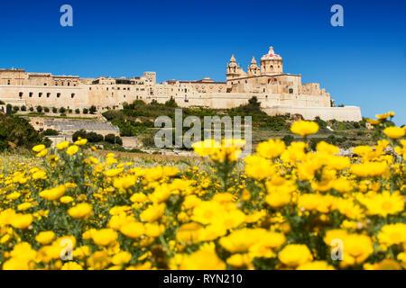 Mdina Cathedral and the City walls, Mdina, Malta, - Stock Image