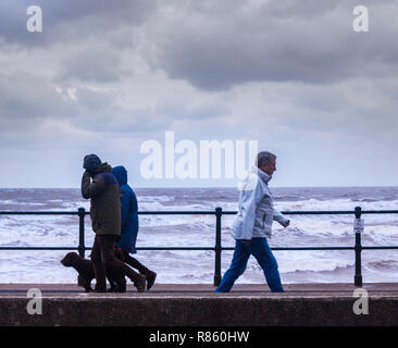 Sidmouth, Devon, UK. 13th Dec 2018 People out on the Esplanade at Sidmouth braving gale force winds and stormy seas. Photo Central/Alamy Live News - Stock Image