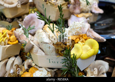 A cardboard container with a variety of mushrooms on display for sale at Turnip stall Borough Market Christmas food in London England UK  KATHY DEWITT - Stock Image