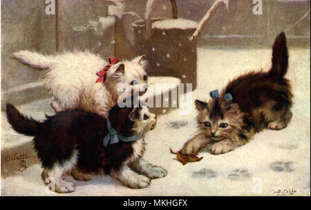 Kittens Playing with Leaf in the Snow - Stock Image