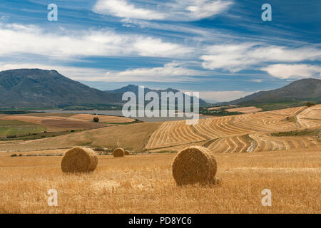 Theewaterskloof Dam and surrounding landscape, Overberg region, Western Cape Province, South Africa. - Stock Image