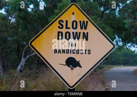 Traffic warning sign near the Australian Garden, Cranbourne, Victoria, Australia - Stock Image