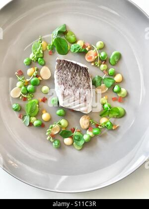 Fish fillet with spring seasonal vegetables - Stock Image