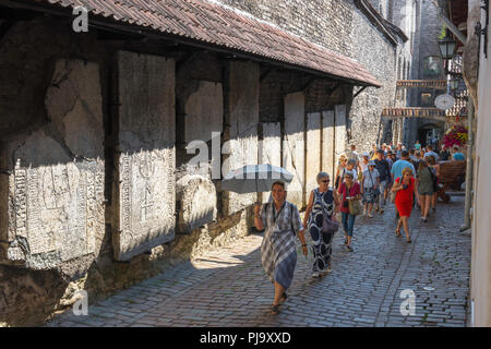 Tallinn tourism, a tour guide leads a group of tourists past huge medieval tombstones in Katarina kaik in the Old Town area of Tallinn, Estonia. - Stock Image