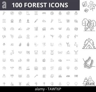 Forest line icons, signs, vector set, outline illustration concept  - Stock Image
