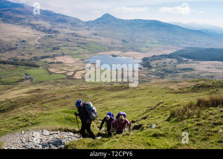 Hikers hiking up a scenic mountain path on Y Garn to start the Nantlle Ridge above Rhyd Ddu, Gwynedd, Wales, UK, Britain - Stock Image