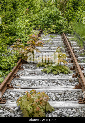 Overgrown railway line in Munich, Germany - Stock Image