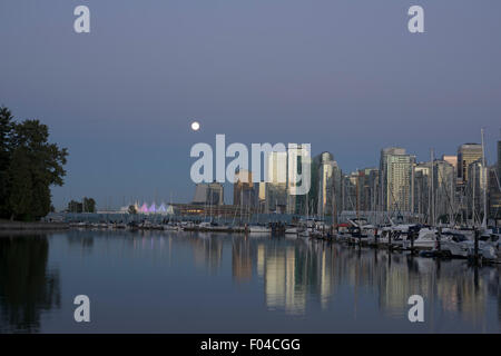 Almost full moon over Coal Harbour - Stock Image